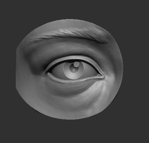 eye reference 3d model stl 1
