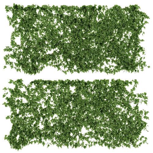 ivy walls 2 models 3d model max obj mtl fbx 1