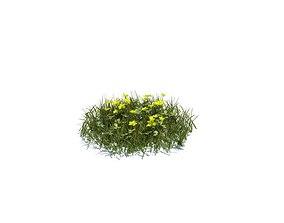 Grass Yellow Flowers 3D