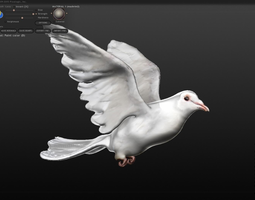 white dove 3d model