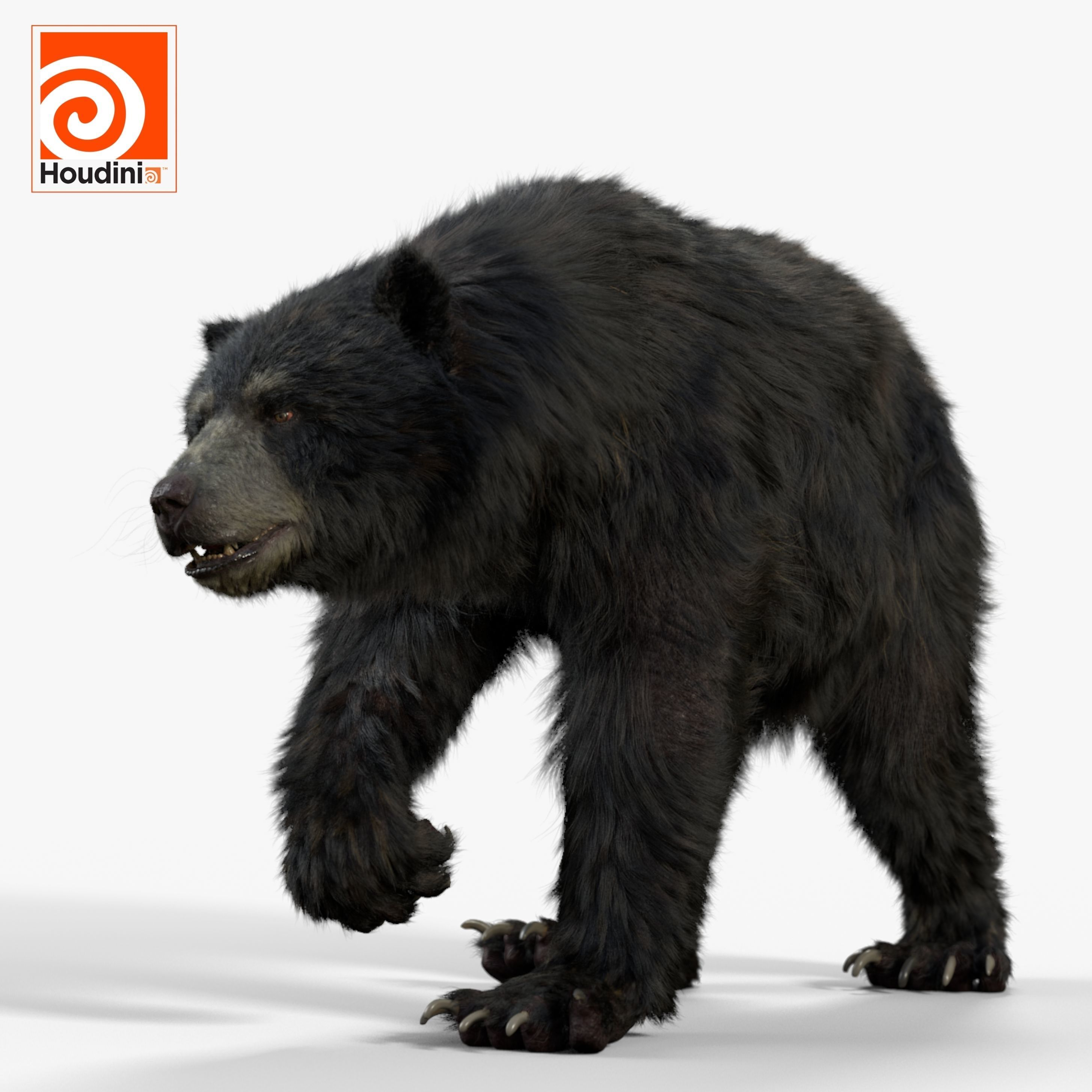 bear black MOD