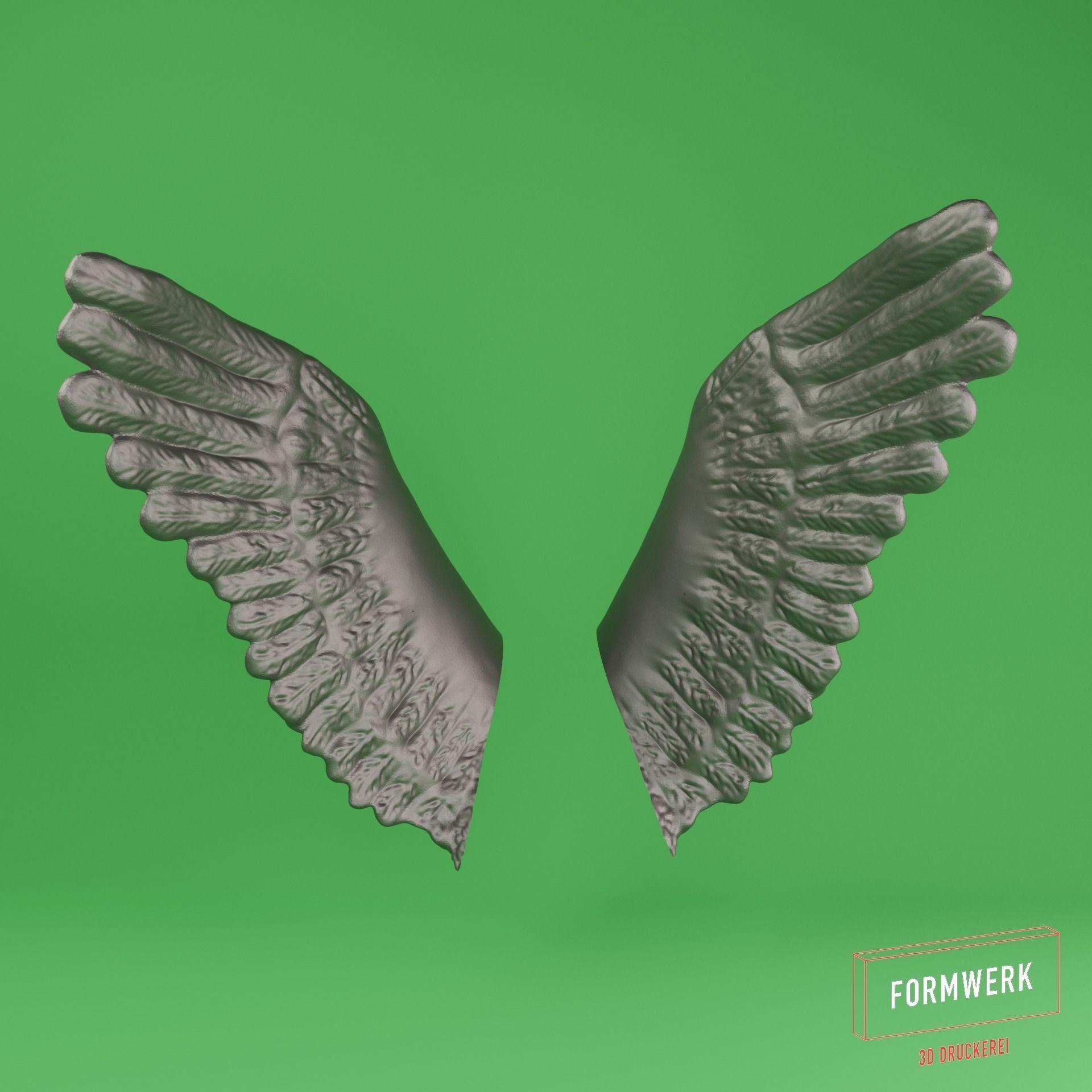 Wing 02