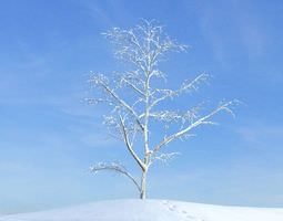 3D Withered Tree Winter