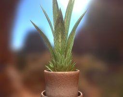 indoor plant nr 3 3d model low-poly obj 3ds fbx dxf stl blend