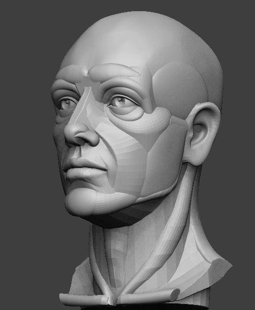 Planar simplified male head