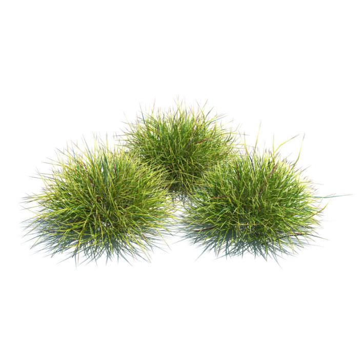 Three Peice Green Landscaping Grass 3d Model Cgtrader
