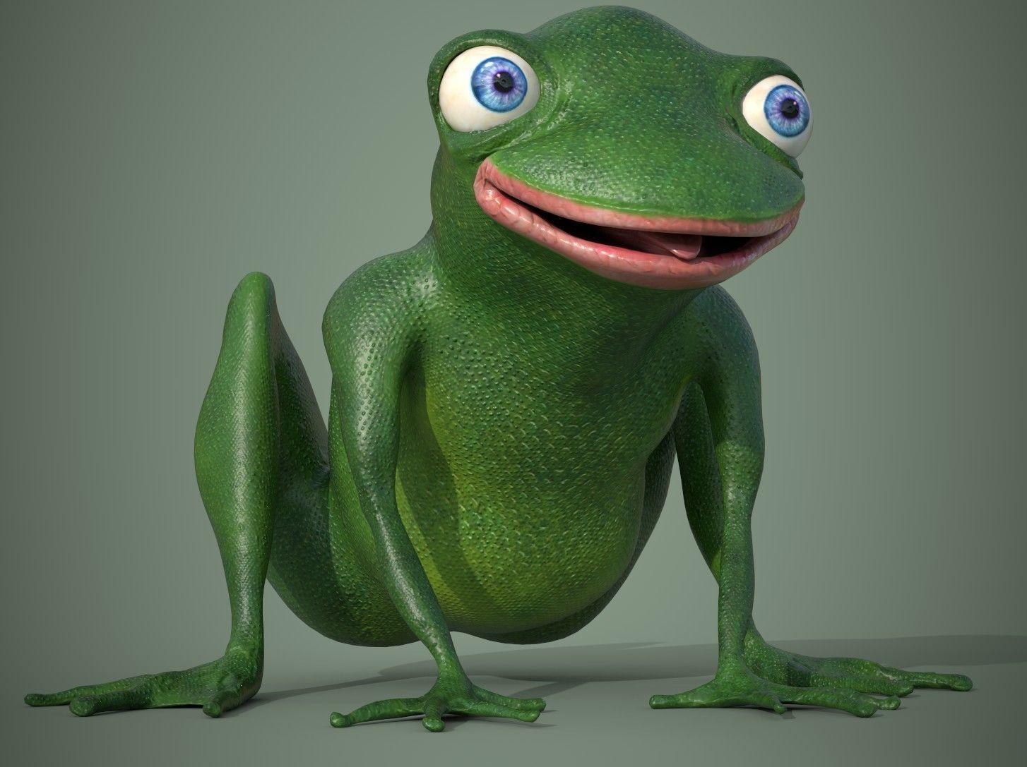 Happy Frog Stylized