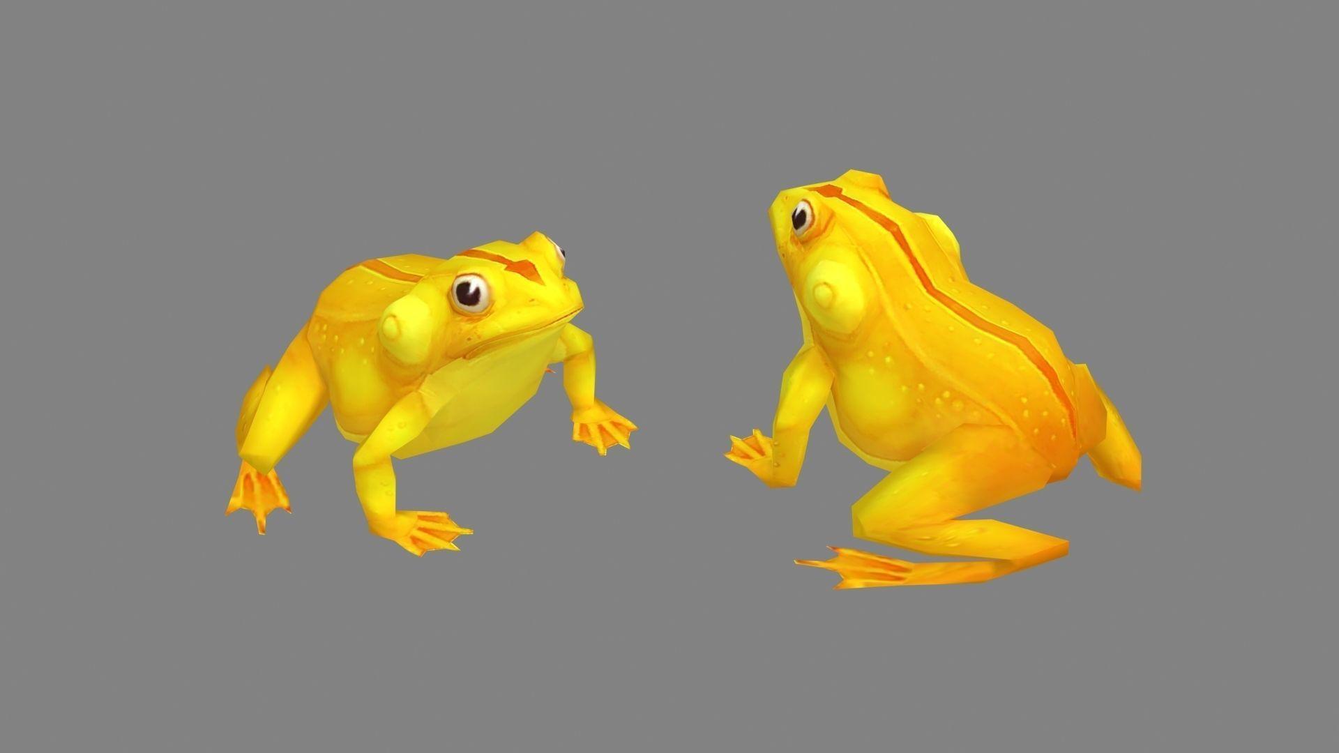 Cartoon golden frog
