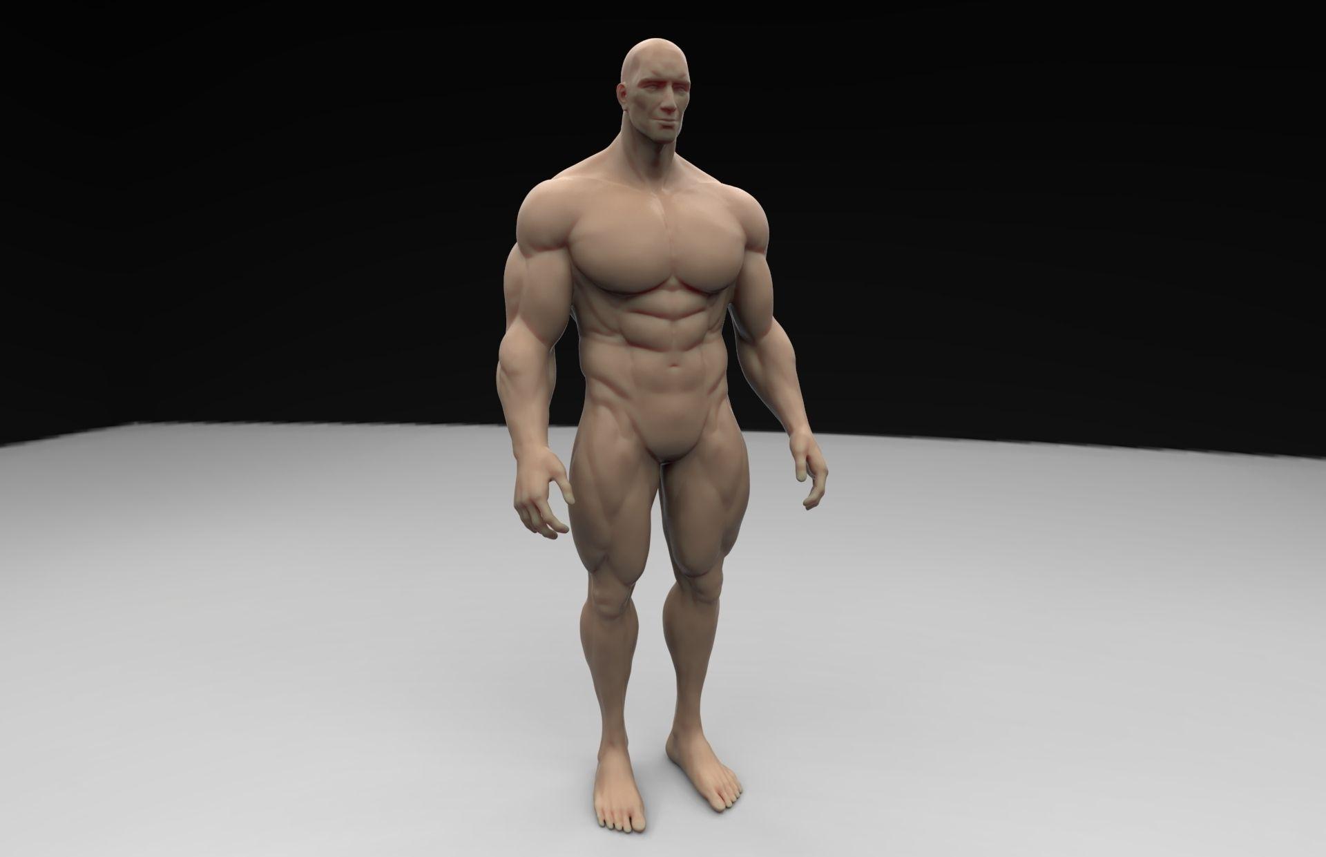 Human Body 3d Printable Model Cgtrader