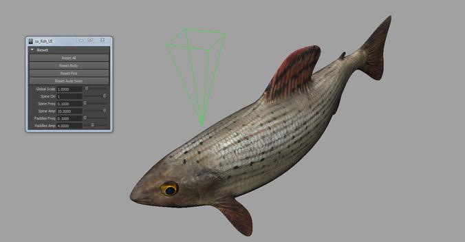 fish 3d 3d model rigged animated obj fbx ma mb 1