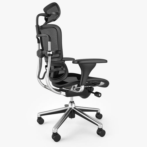 Raynor Ergohuman Chair 3d Model Max Obj Mtl Fbx 7