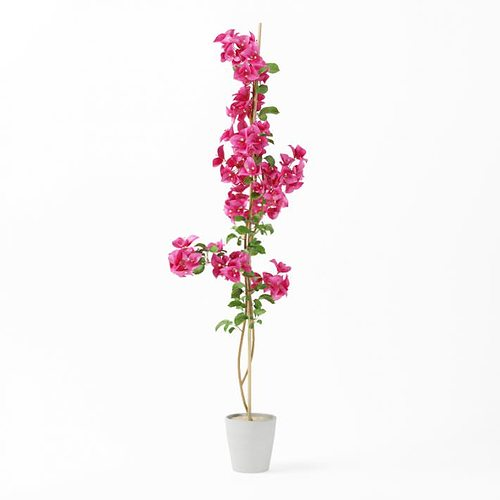 3d model tall pink potted flower cgtrader tall pink potted flower 3d model obj mtl 1 mightylinksfo