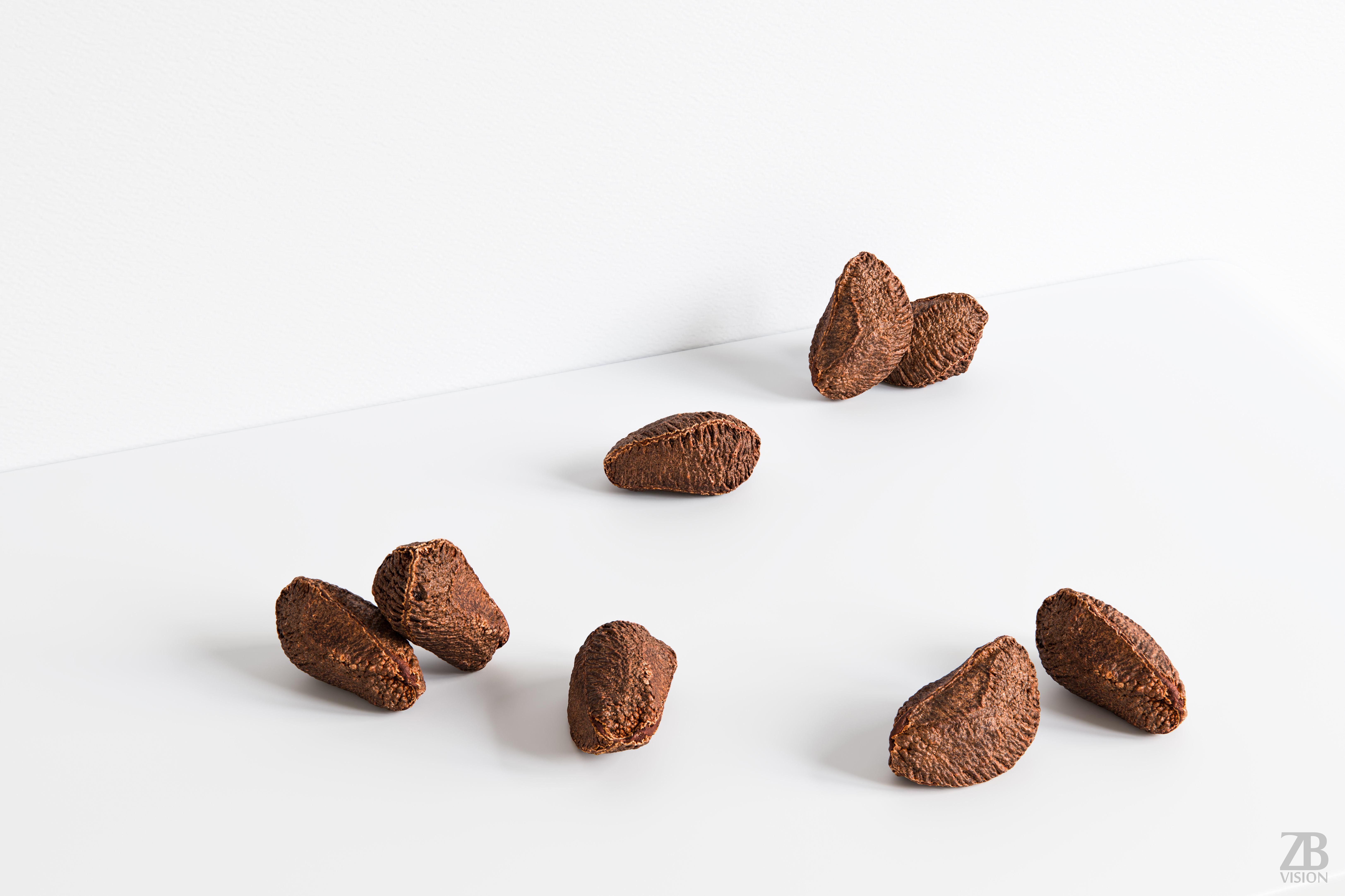 Brazil Nut 002