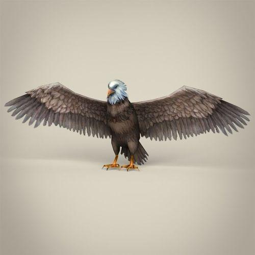 low poly realistic eagle 3d model low-poly max obj 3ds fbx c4d lwo lw lws 1