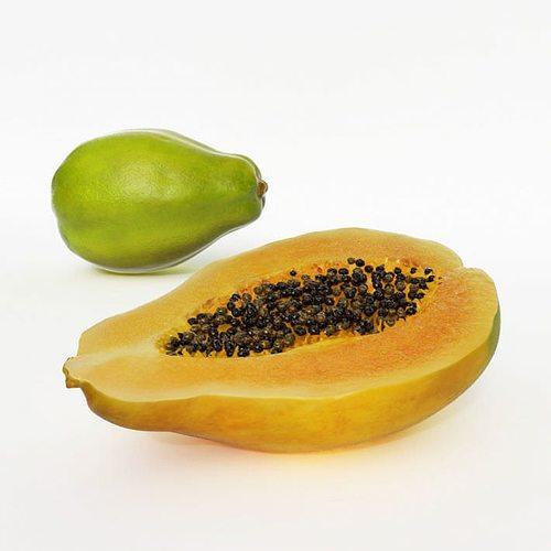 exotic fruit papaya 3d model obj mtl 1