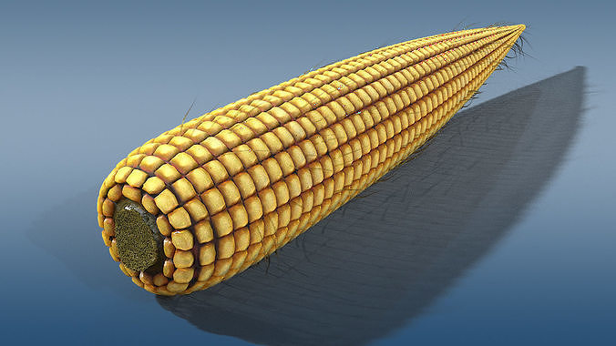 old corn low poly