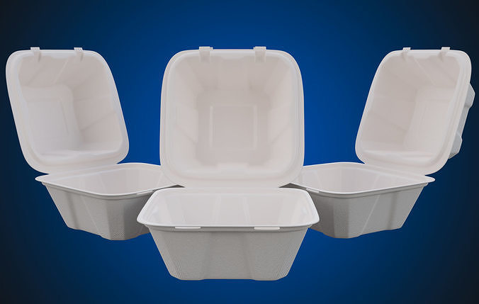 Compostable Food Container - Disposable