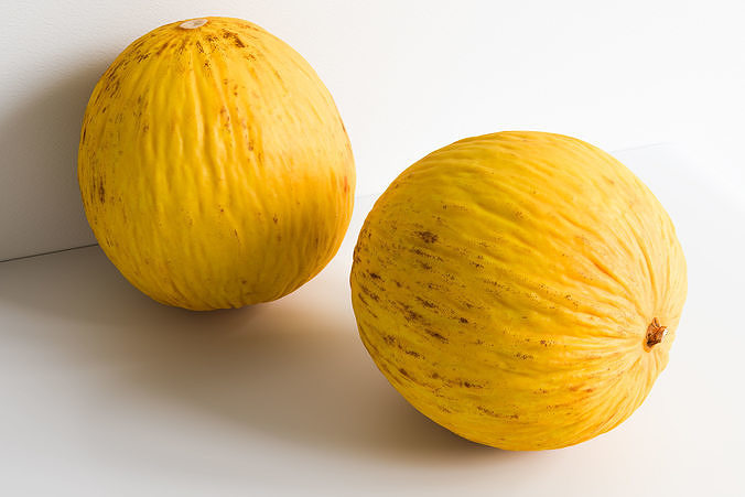 Melon 002