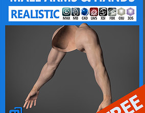 3D Adult Male Arms and Hands