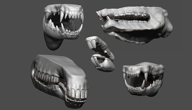 Animal Mouth ZBrush Sculpt Collection