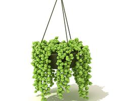 Green Hanging Plant 3D model