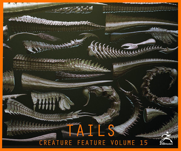 TAILS - 33 Tail Meshes and Curve Brushes