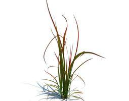 simple green grass 3d