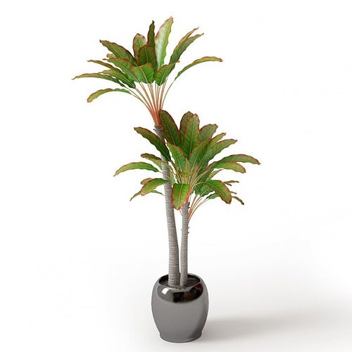 leafy palm trees in a pot 3d model obj 1