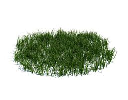 3D model sample Green Grass Patch