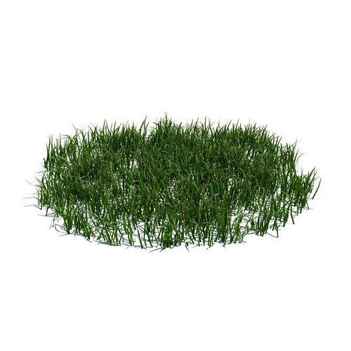 green grass patch 3d model obj mtl 1