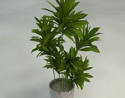 Plants with Vase Pack 3D model