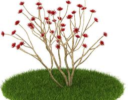 3D model Red Flowered Plant On The Grass