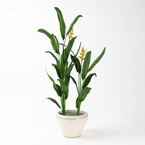 green potted plant 3d model obj mtl 1