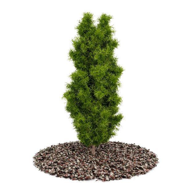 Green Garden Bush 3d Model Obj 1