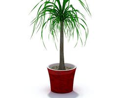 3D plant Green Potted Plant