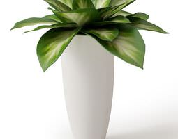 Green Potted Plant 3D large