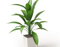 Leafy Potted Plant 3D model