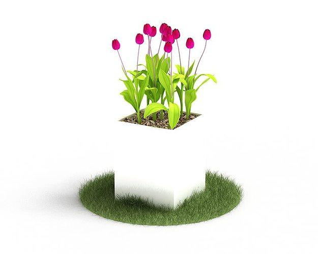 pink tulips in a square pot 3d model obj mtl 1