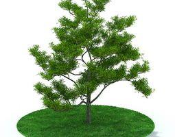 Green Leafy Tree 3D model tree