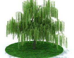 wide outside green tree 3d