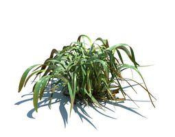 frost grass 3d model
