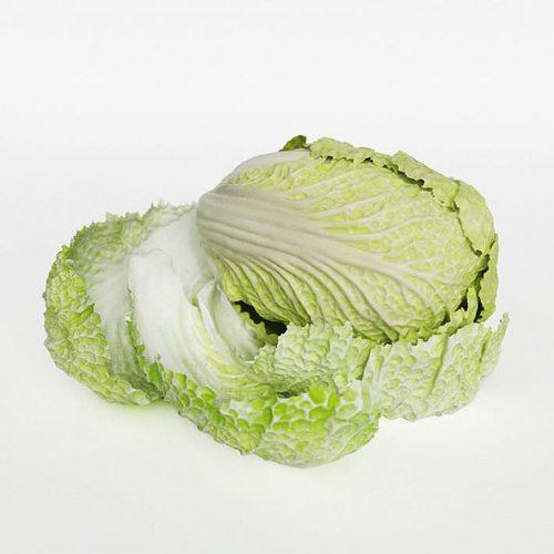 pok choi cabbage 3d model obj mtl 1