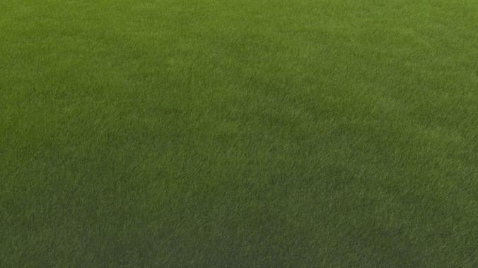 grass 3d model blend 1