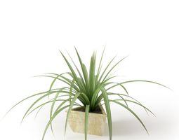 3d model green foliage houseplant  in lovely white plantar