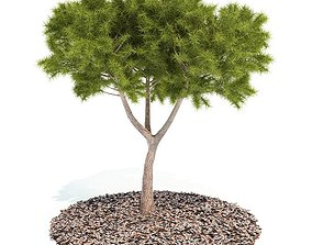 3D model green Green Tree