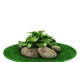 3D Green Leafy Plant With Stones