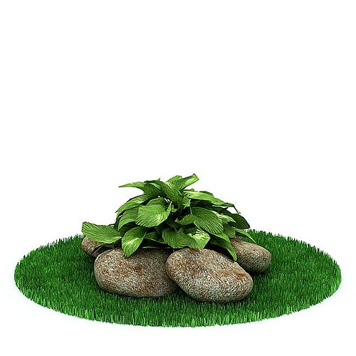 green leafy plant with stones 3d model 3ds 1