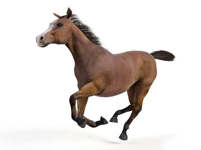 brown galloping horse 3d model obj 1