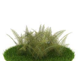 Green Carpet Fern Bush 3D Model