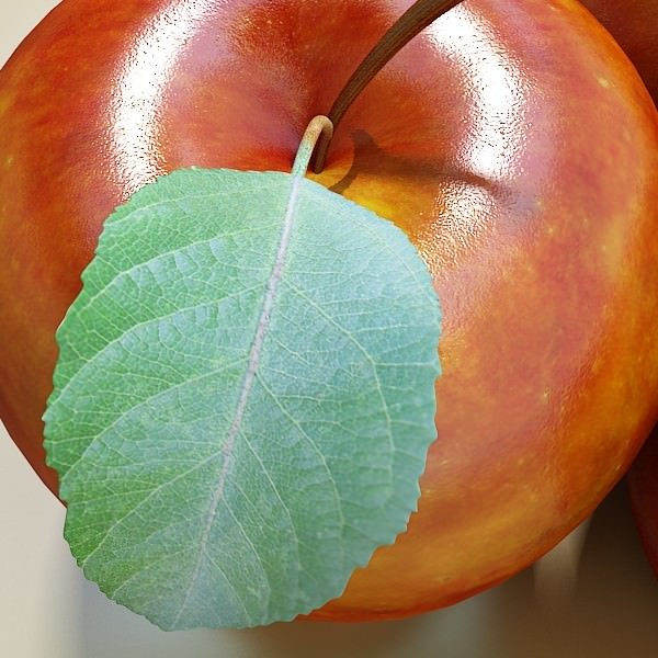 3D model Red Apple High Detail | CGTrader